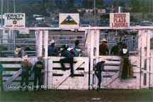 Hangin' on the Gate (Rodeo de Sante Fe)